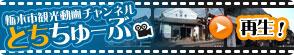 spot-video-bnr